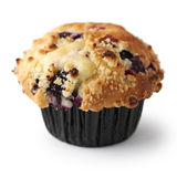Homemade Blueberry Muffin Royalty Free Stock Photos