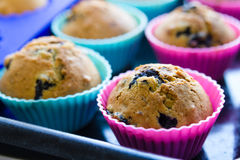 Homemade blueberry muffins with berries closeup in baking cups Stock Photos
