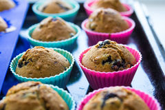 Homemade blueberry muffins with berries closeup in baking cups Stock Photo