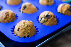 Homemade blueberry muffins with berries closeup in bright blue baking dish. Homemade blueberry muffins with berries closeup in baking dish stock photos