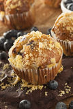 Homemade Blueberry Muffins for Breakfast Stock Photography