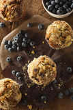 Homemade Blueberry Muffins for Breakfast Royalty Free Stock Photo