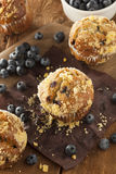 Homemade Blueberry Muffins for Breakfast Royalty Free Stock Images