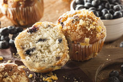 Homemade Blueberry Muffins for Breakfast Stock Images