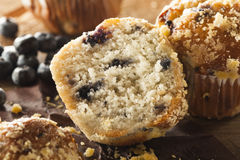 Homemade Blueberry Muffins for Breakfast Royalty Free Stock Photography