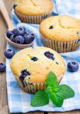 Homemade blueberry muffins Stock Image