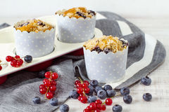 Homemade blueberry muffins Royalty Free Stock Photos