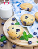 Homemade blueberry muffins Stock Images