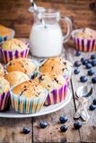 Homemade blueberry muffins with milk Royalty Free Stock Photo