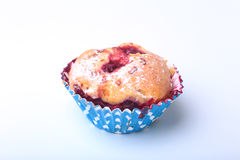 Homemade Blueberry muffins with powdered sugar and fresh berries. Royalty Free Stock Image