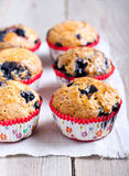 Homemade blueberry muffins Royalty Free Stock Photography
