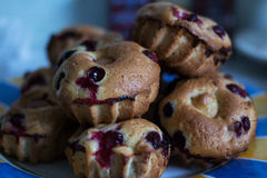 Homemade blueberry muffins. Still-life photography Stock Photo
