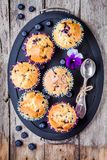 Homemade blueberry muffins on a tray top view Royalty Free Stock Photo