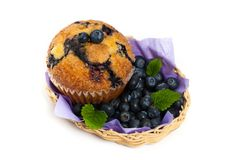 Homemade Blueberry Muffins Royalty Free Stock Images