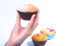 Homemade Blueberry ore chocolate muffins with powdered sugar and fresh berries in woman hand. Royalty Free Stock Images