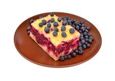 Homemade blueberry pie Royalty Free Stock Photo