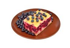 Homemade blueberry pie Stock Photos