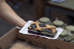 homemade blueberry pie Stock Images