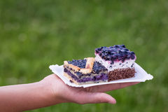 homemade blueberry pie Royalty Free Stock Images