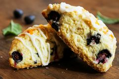 Homemade Blueberry scone breakfast Stock Photos