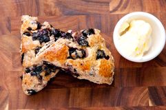 Homemade blueberry scones Stock Image