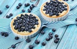Homemade blueberry tart Royalty Free Stock Images
