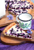 Homemade blueberry tart pie and milk Stock Photography