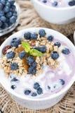 Homemade Blueberry Yogurt Stock Photos