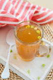 Homemade bone broth Royalty Free Stock Photo