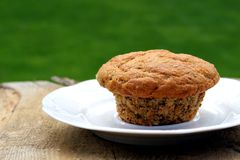 Homemade bran muffin Stock Photography