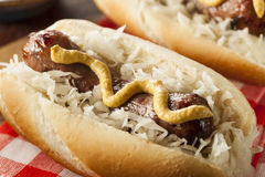 Homemade Bratwurst with Sauerkraut Stock Photo
