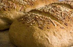 Homemade Bread. Homemade herb bread, fresh from the oven, cools on the counter Stock Images