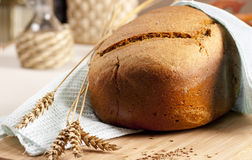 Homemade bread. Fresh baked bread with ears royalty free stock photo