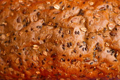Homemade bread with cereals Stock Photo