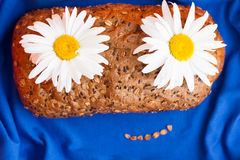 Homemade bread with cereals and chamomille smile face on a blue background Royalty Free Stock Photo