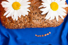 Homemade bread with cereals and chamomille smile face on a blue background. Homemade bread with cereals and chamomille smiling face on a blue background Stock Image