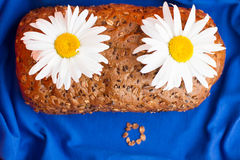 Homemade bread with cereals and chamomille surorised face on a blue background. Homemade bread with cereals and chamomille surprised face on a blue background Stock Images