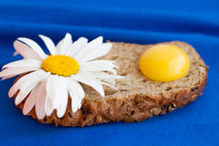 Homemade bread with cereals and fresh egg on a blue background. For sample texte on it Royalty Free Stock Photos