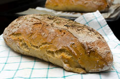 Homemade bread with herbs Stock Photos