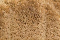 Homemade bread surface texture Stock Photo