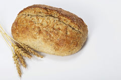 Homemade bread and wheat Stock Image