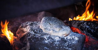 Homemade bread. With wood fire Royalty Free Stock Photos