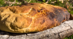 Homemade bread. With wooden fire Royalty Free Stock Photography