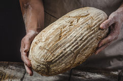 Homemade bread from young woman chef Stock Photography