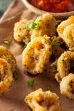 Homemade Breaded Fried Calamari stock photos