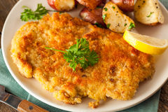 Homemade Breaded German Weiner Schnitzel Royalty Free Stock Photos