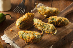 Homemade Breaded Jalapeno Poppers. With Cream Cheese royalty free stock photos