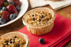 Homemade Breakfast Oatmeal Muffins. With Chocolate Chips Stock Images
