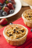 Homemade Breakfast Oatmeal Muffins Royalty Free Stock Images
