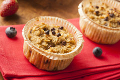 Homemade Breakfast Oatmeal Muffins royalty free stock image